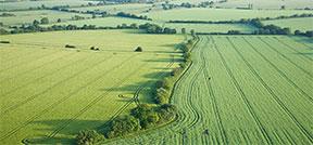 Link til landinspektøropgaver for landbruget